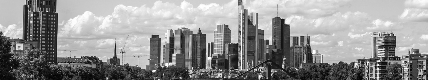 Frankfurt am Main, PRGN, Investor Relations, IR agency