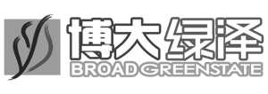 Broad Greenstate International
